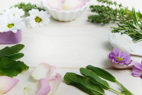 herbs-3141838__340